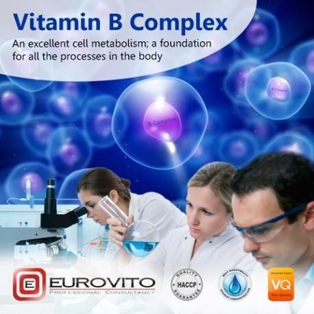 Vitami B Complex 1l