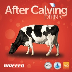 AfterCalving Drink 1 kg